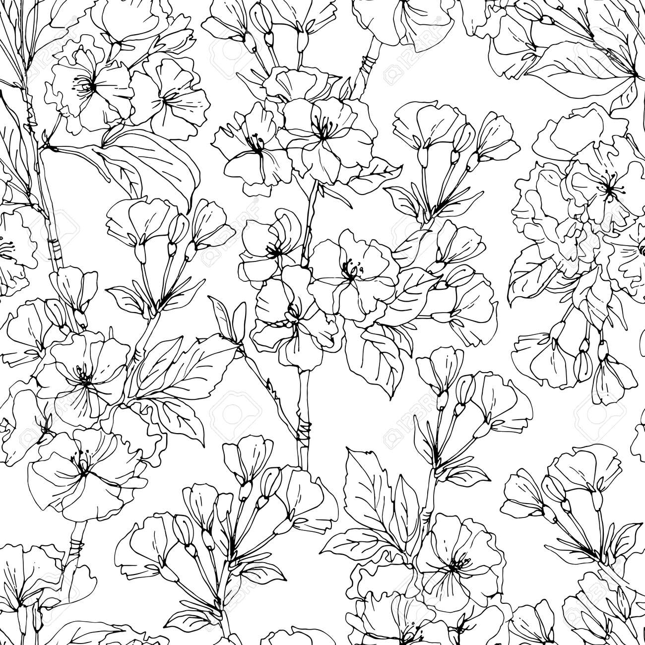 Flower pattern Vector sketch of flowers by line on a white background. - 169914260