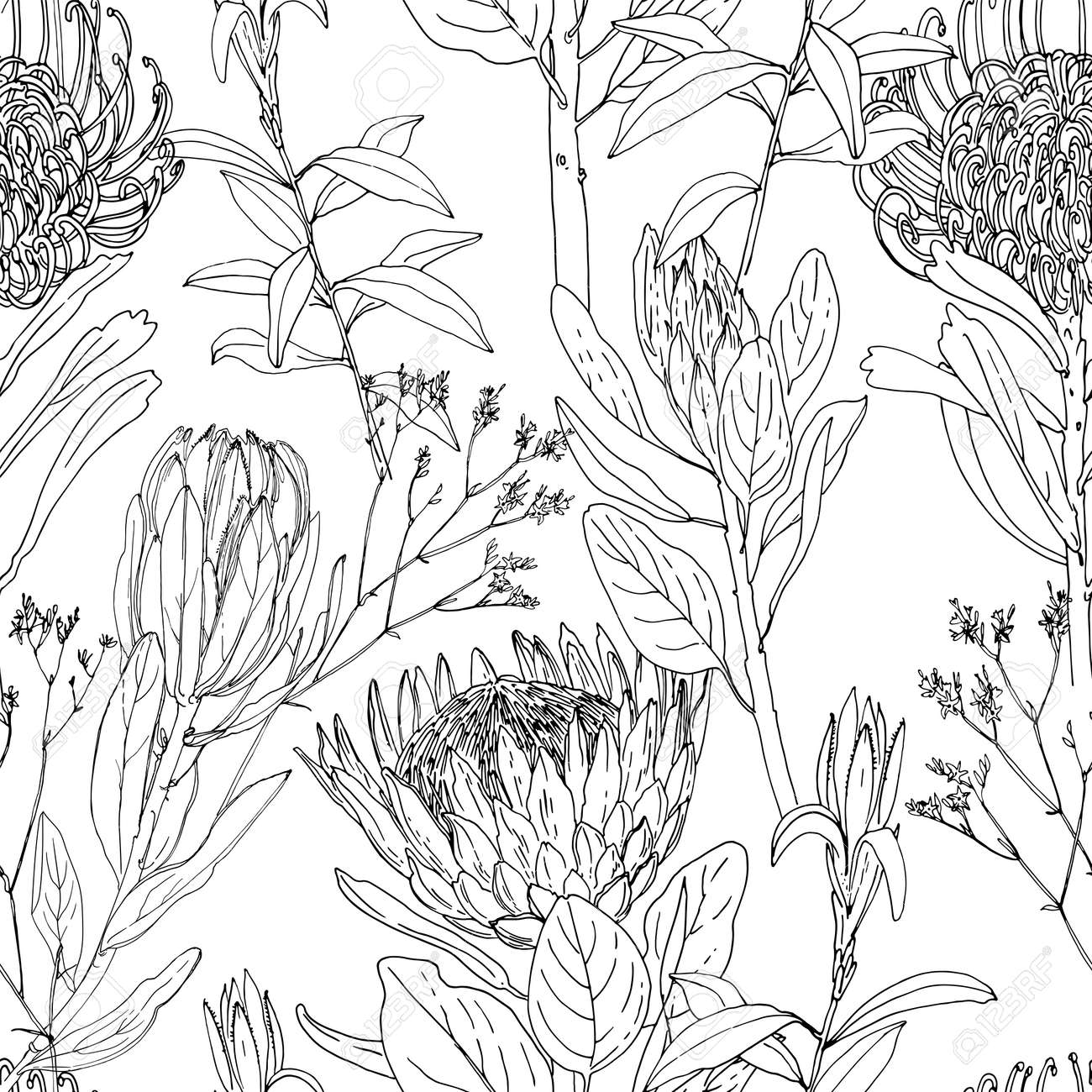 Flower pattern Vector sketch of flowers by line on a white background. - 169914264