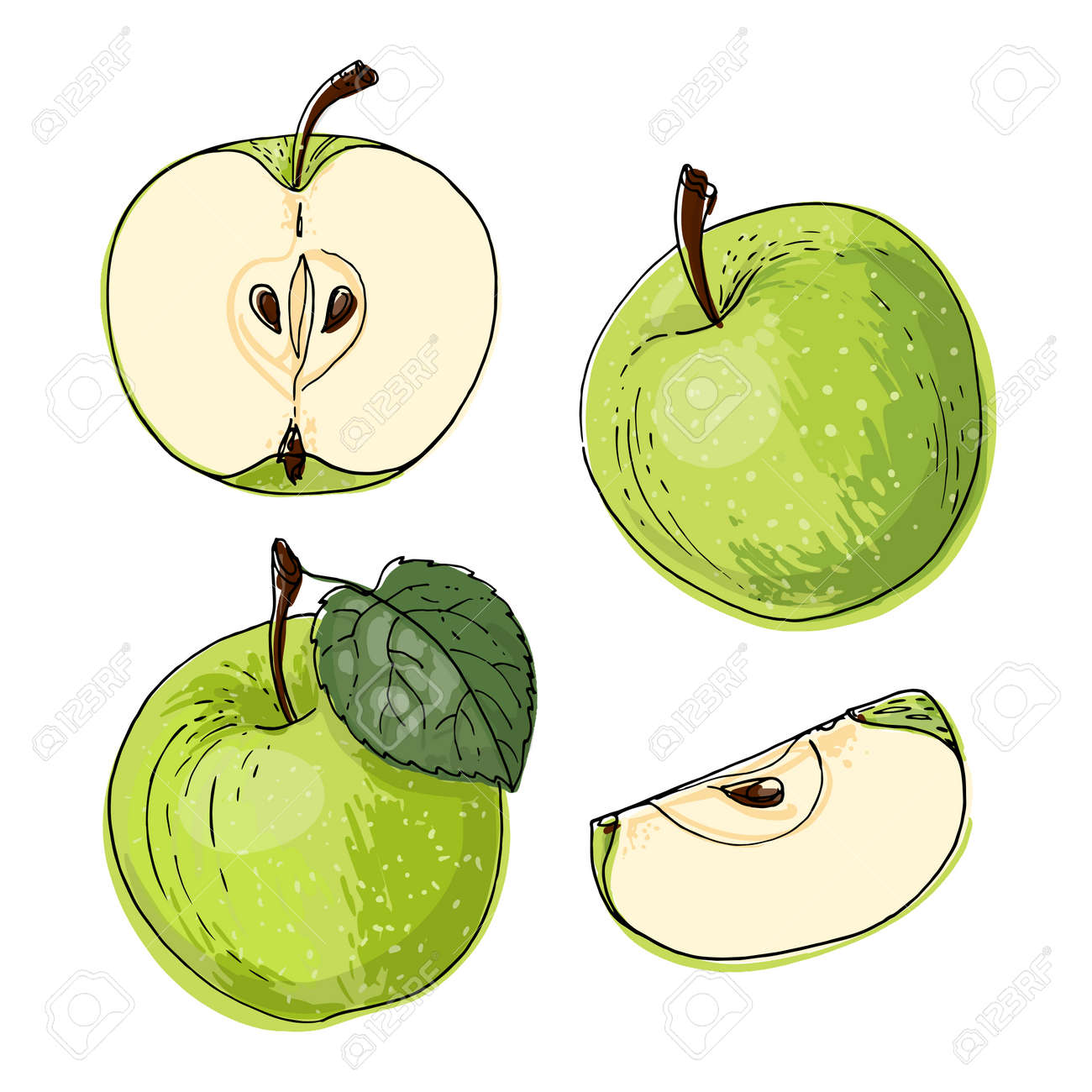 Apple red and orange. Vector food icons of fruits. Colored sketch of food products. - 170892760