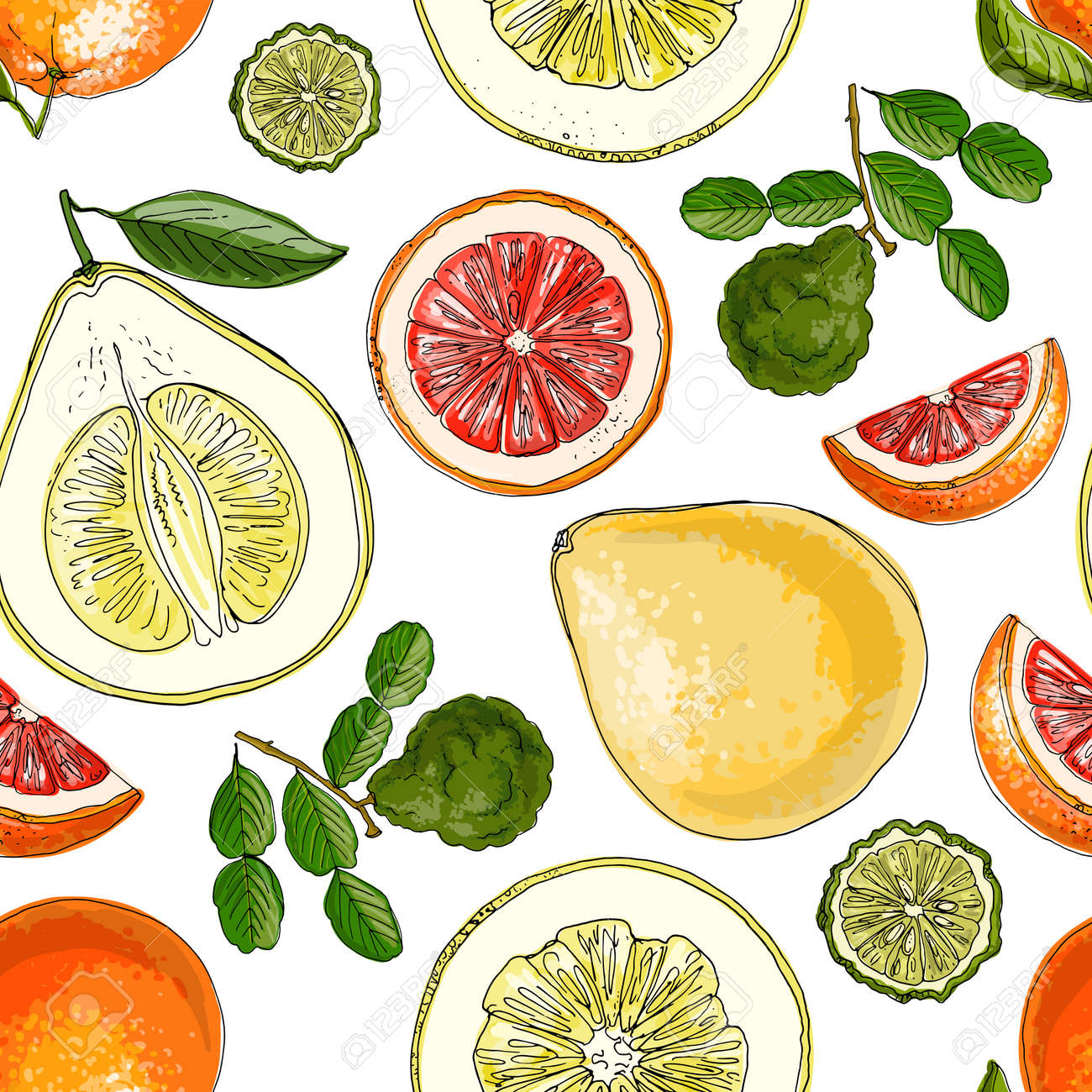Pattern with citrus fruits orange. Vector food sketch. Exotic food drawings - 170860699