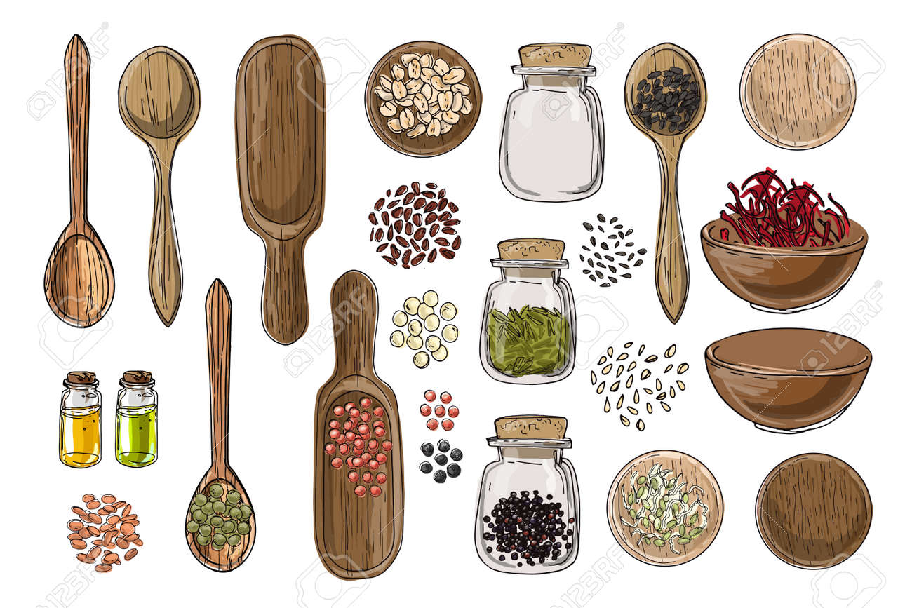 Vector food icons. Colored sketch of food products. Spices, nuts, herbs, beans, cereals, oil, spice jars, wooden spoons. - 171951918