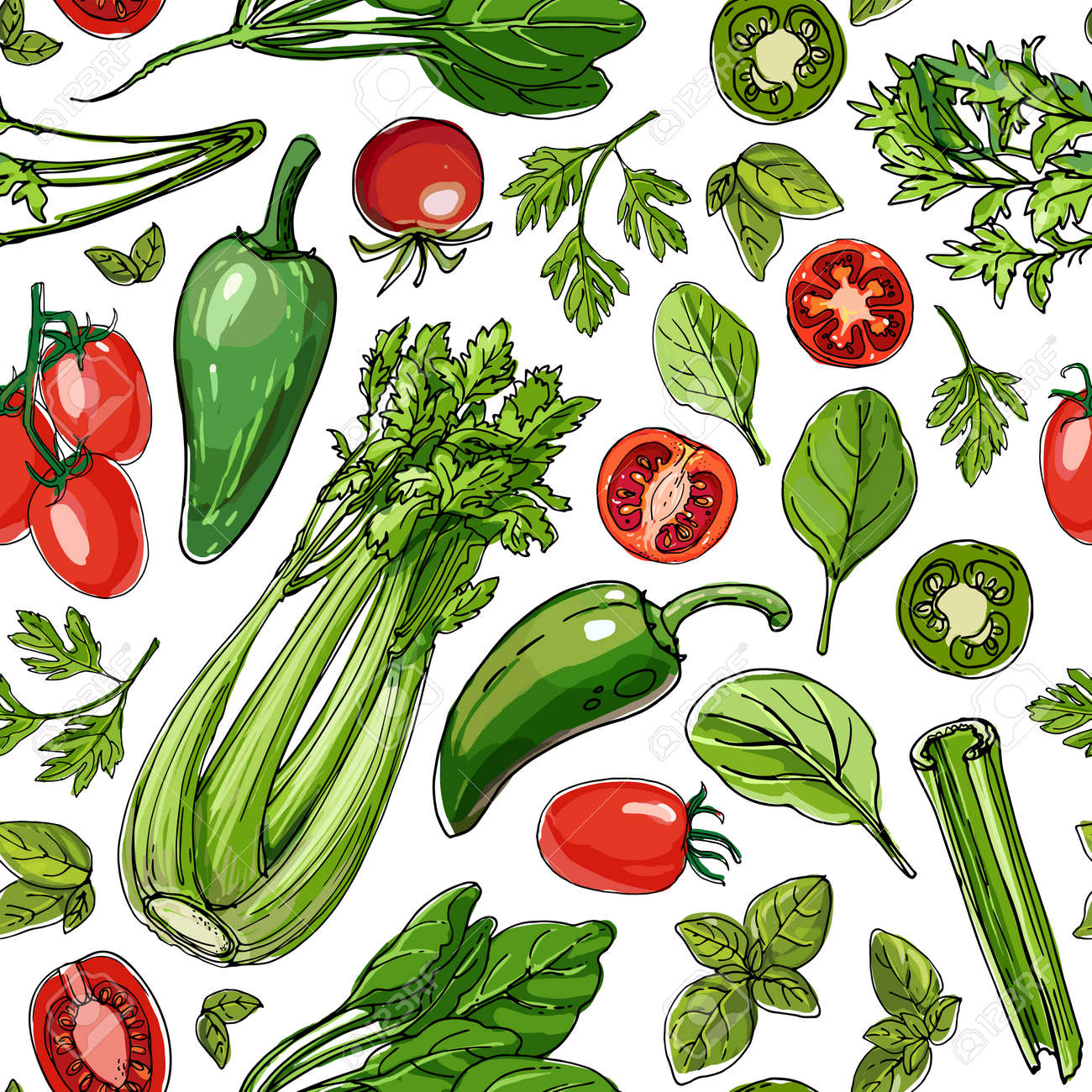 Seamless pattern vector vegetable food. Herbs and spices, tomatoes and spinach - 173006171