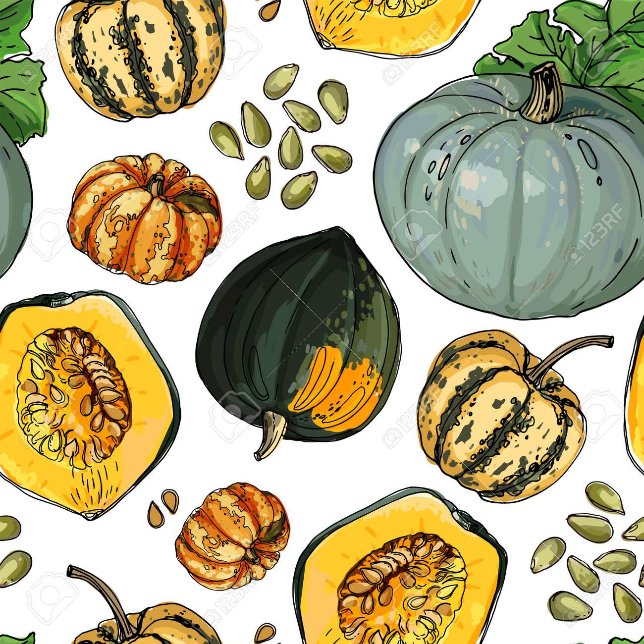 Seamless pattern vector vegetable food. Orange And Gray Pumpkin. autumn ornament - 173006288