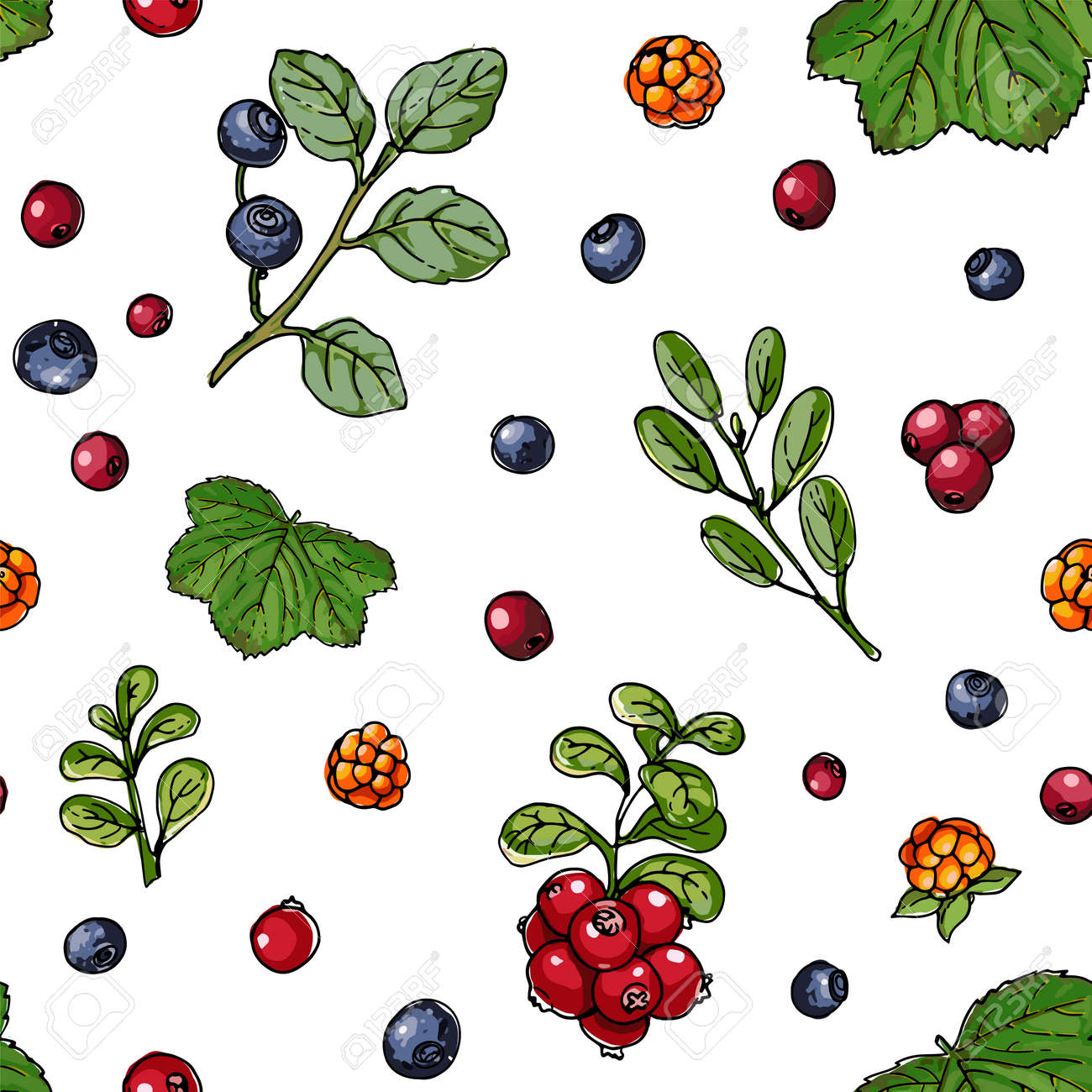 Seamless berries pattern vector color food. Wild strawberry, wild strawberry - 173006287