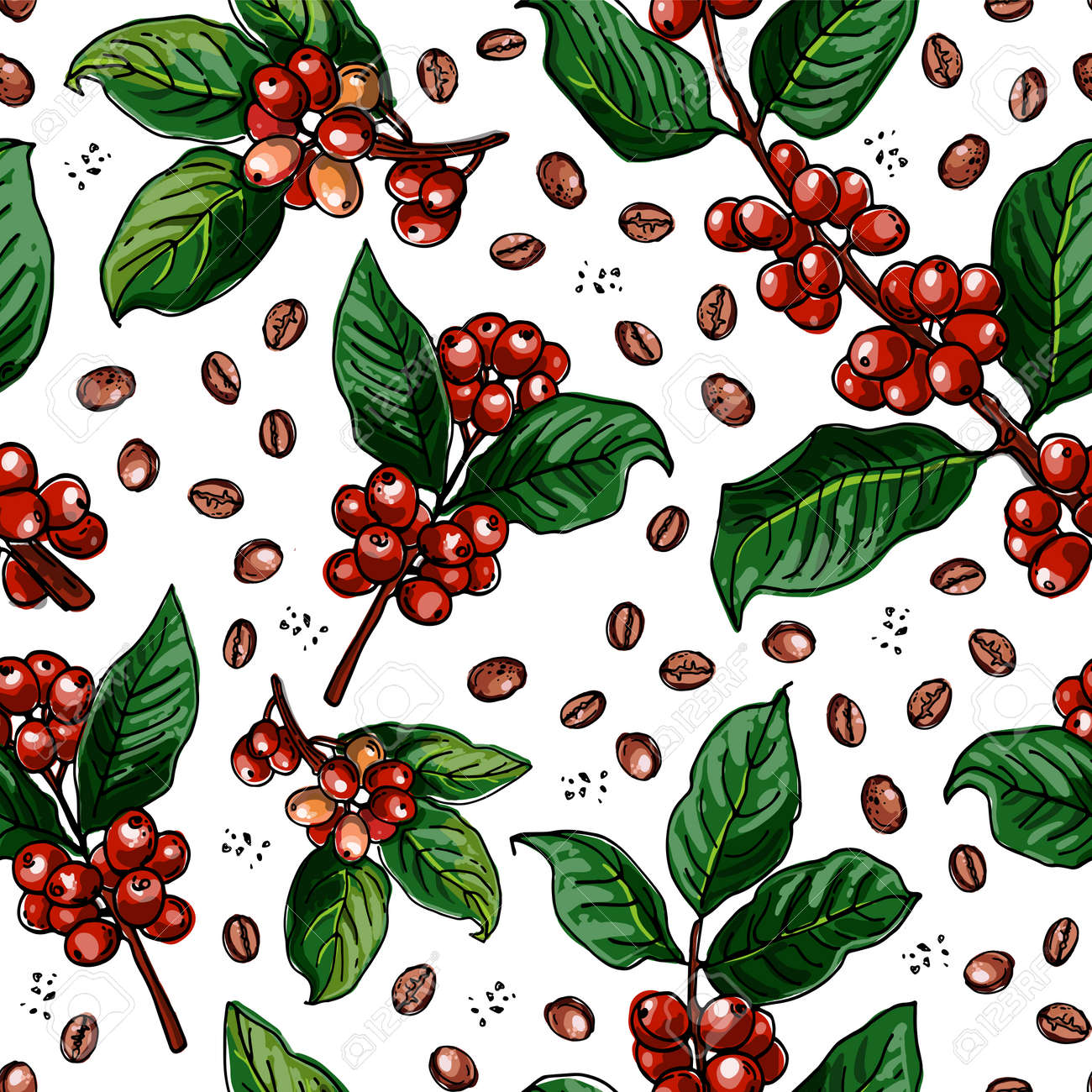 Seamless pattern vector color food. Branch of coffee, berries. - 173006285