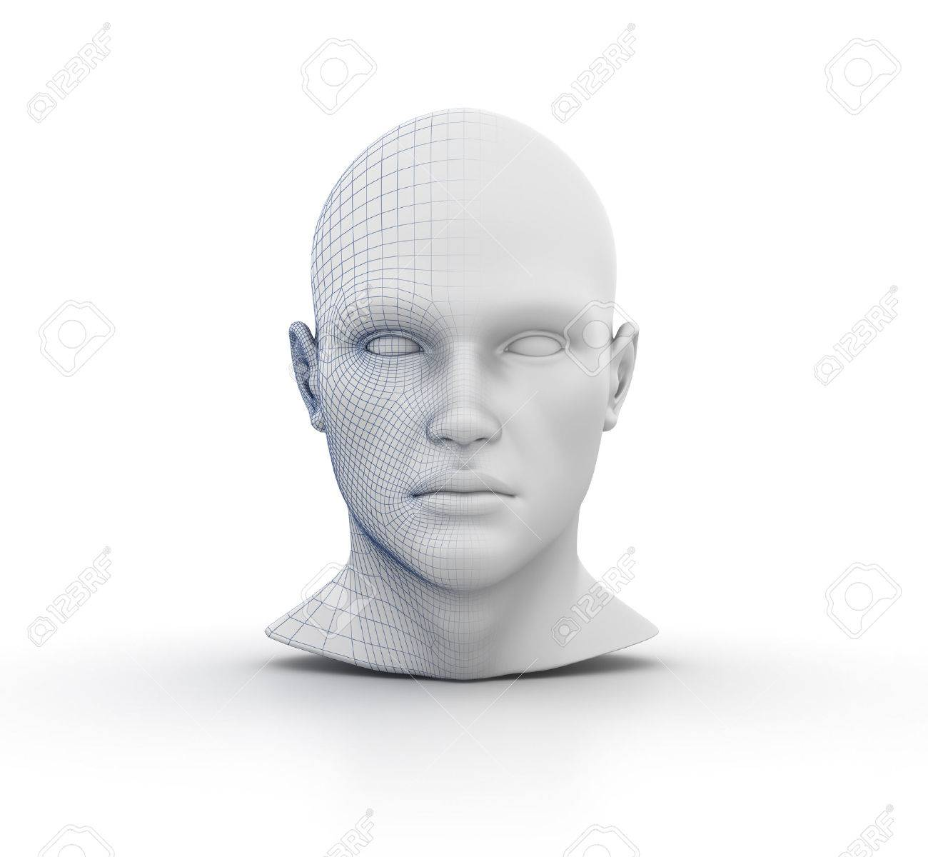 Human Head Wireframe On White Background - High Quality 3D Rendering ...