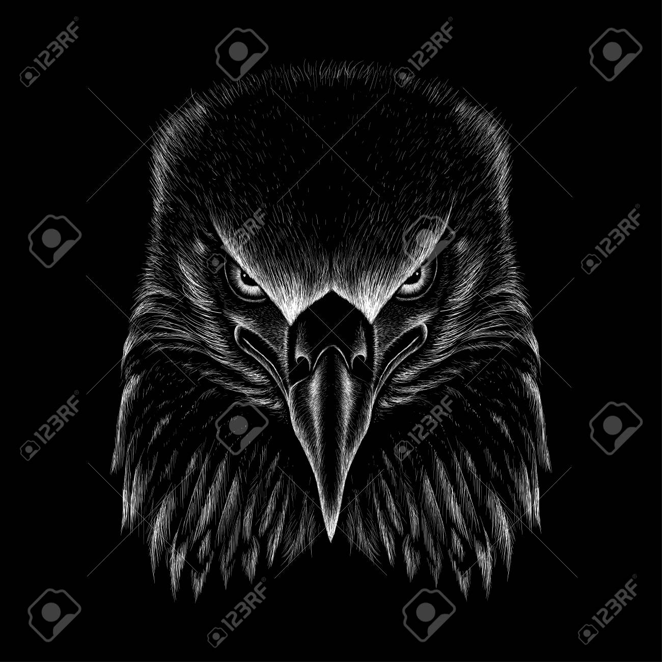 The Vector eagle for T-shirt design or outwear. Hunting style eagle background. - 104787041