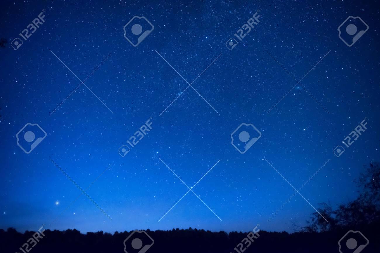shop best sellers sale online save up to 80% Beau ciel bleu nuit avec beaucoup d'étoiles au-dessus de la forêt. Milkway  fond de l'espace
