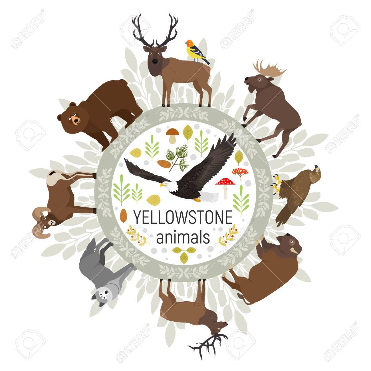 Kreis-Vektor-Vorlage Von Yellowstone Nationalpark Tiere Grizzly ...