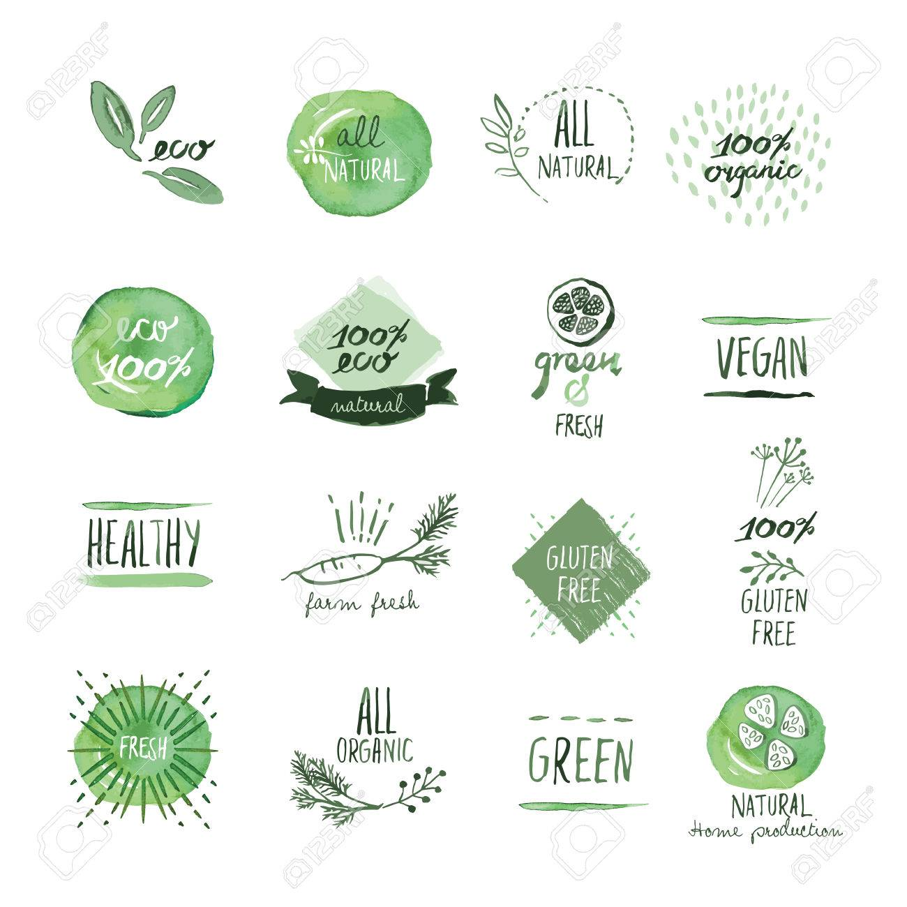 Set of organic food hand drawn watercolor labels and elements. Vector illustrations for organic food and drink, restaurant and organic products. - 55848275
