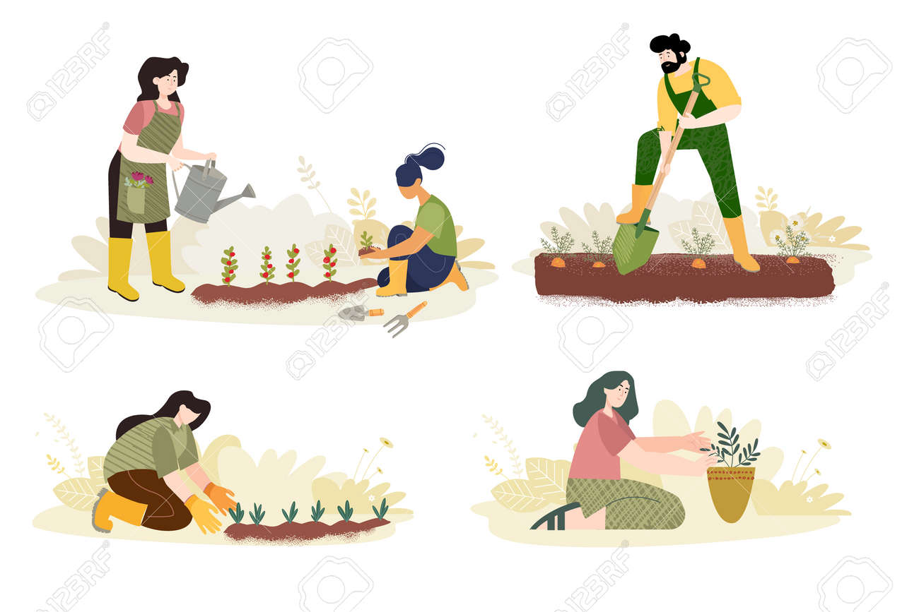Organic farming, agriculture and gardening. - 170345399