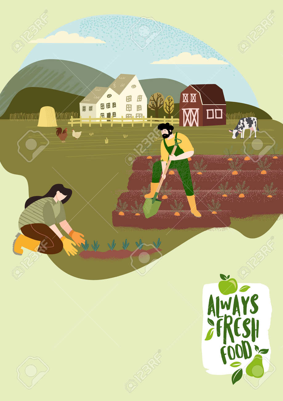 Organic farming, agriculture and gardening. Vector illustration for poster, brochure cover, background, business presentation, marketing material for food market and restaurants. - 170944571