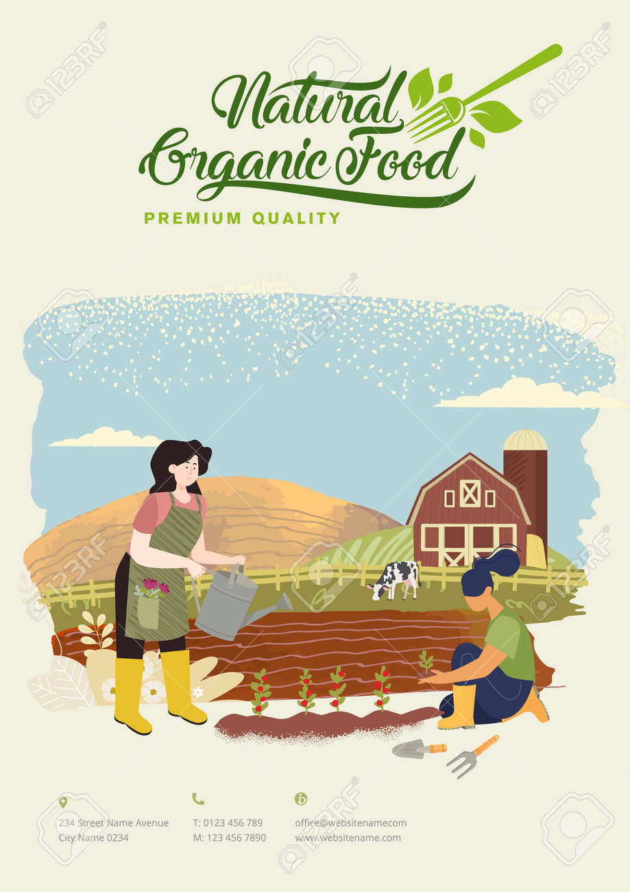 Organic farming, agriculture and gardening. Vector illustration for poster, brochure cover, background, business presentation, marketing material for food market and restaurants. - 170944630