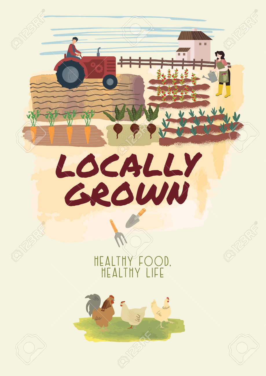 Organic farming, agriculture and gardening. Vector illustration for poster, brochure cover, background, business presentation, marketing material for food market and restaurants. - 172080034