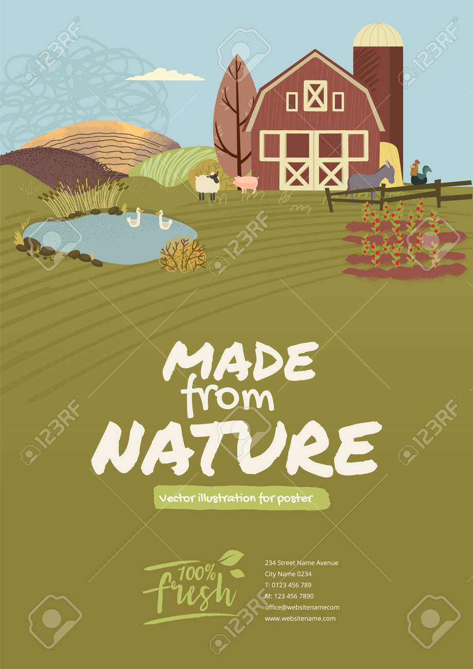 Organic farming, agriculture and gardening. Vector illustration for poster, brochure cover, background, business presentation, marketing material for food market and restaurants. - 172080038