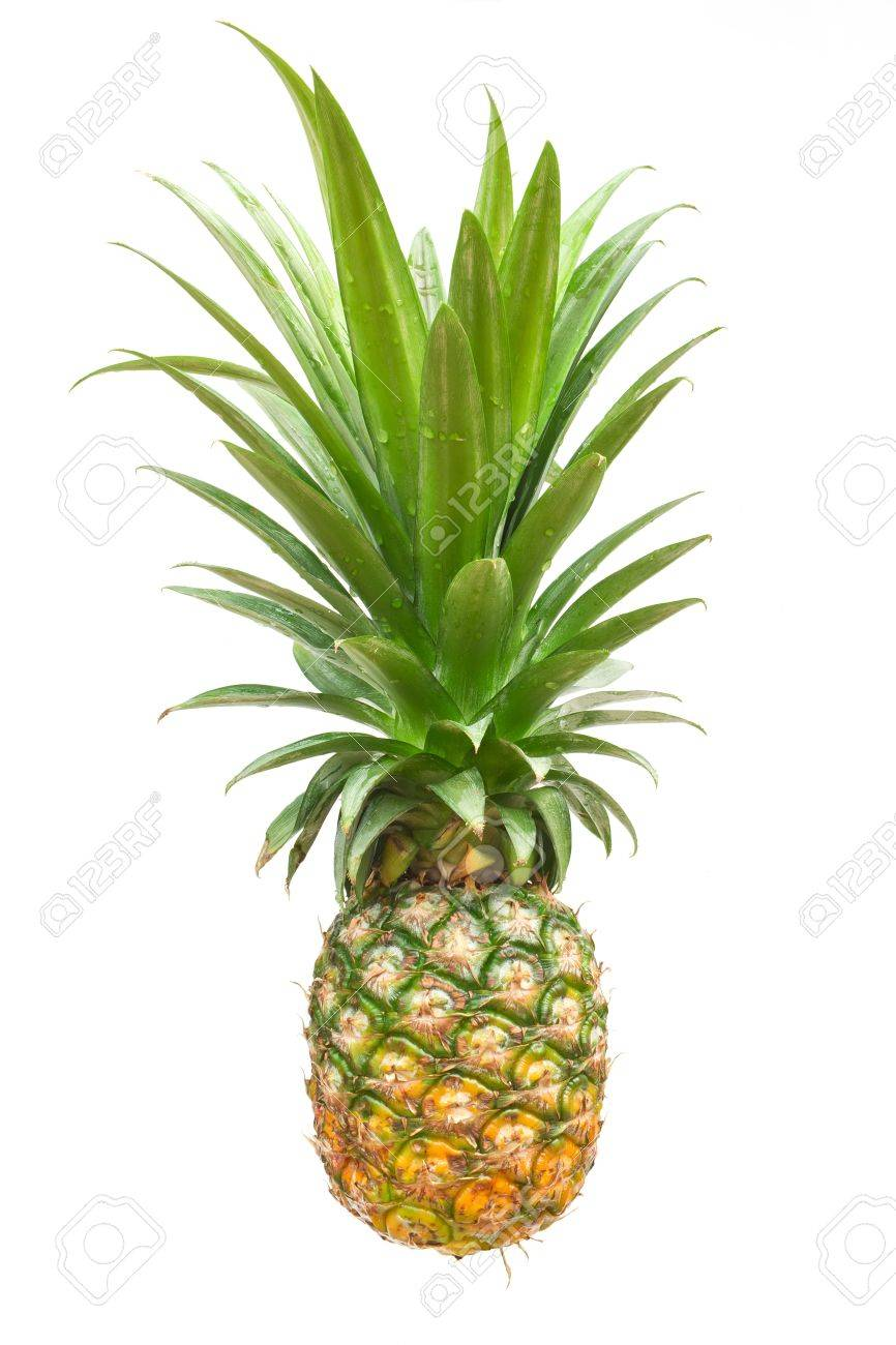 pineapple isolated on a white background Stock Photo - 19082867