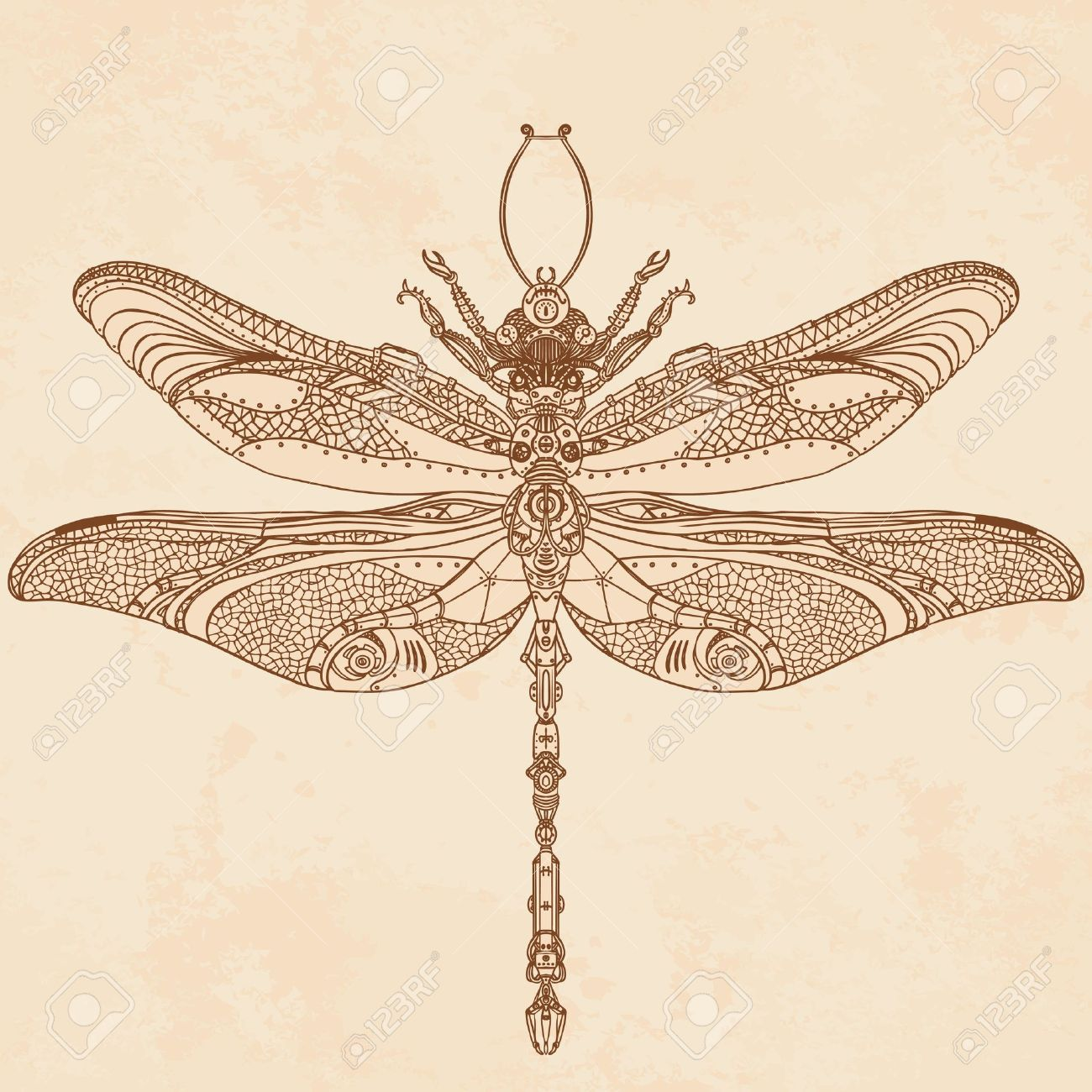 10 553 dragonfly cliparts stock vector and royalty free dragonfly