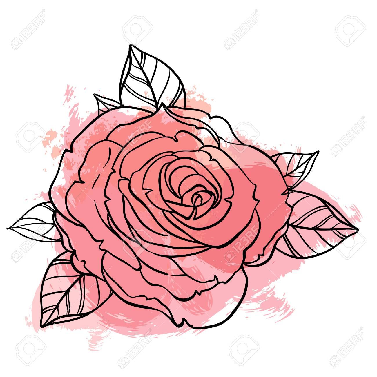 dibujo hermoso del ramo de las rosas en fondo amarillento del grunge