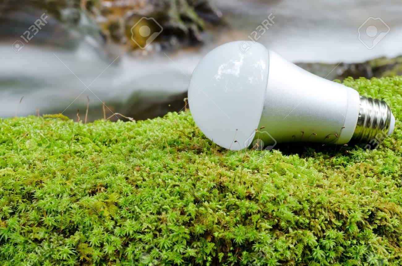 LED light bulb on the green moss near the brook Stock Photo - 13299219