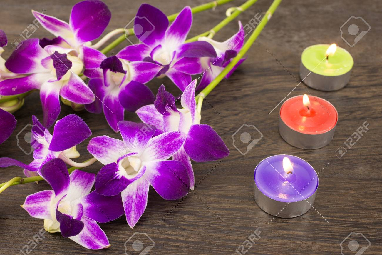 Purple Orchid Flowers And Three Color Of Tin Candles On Wood ...