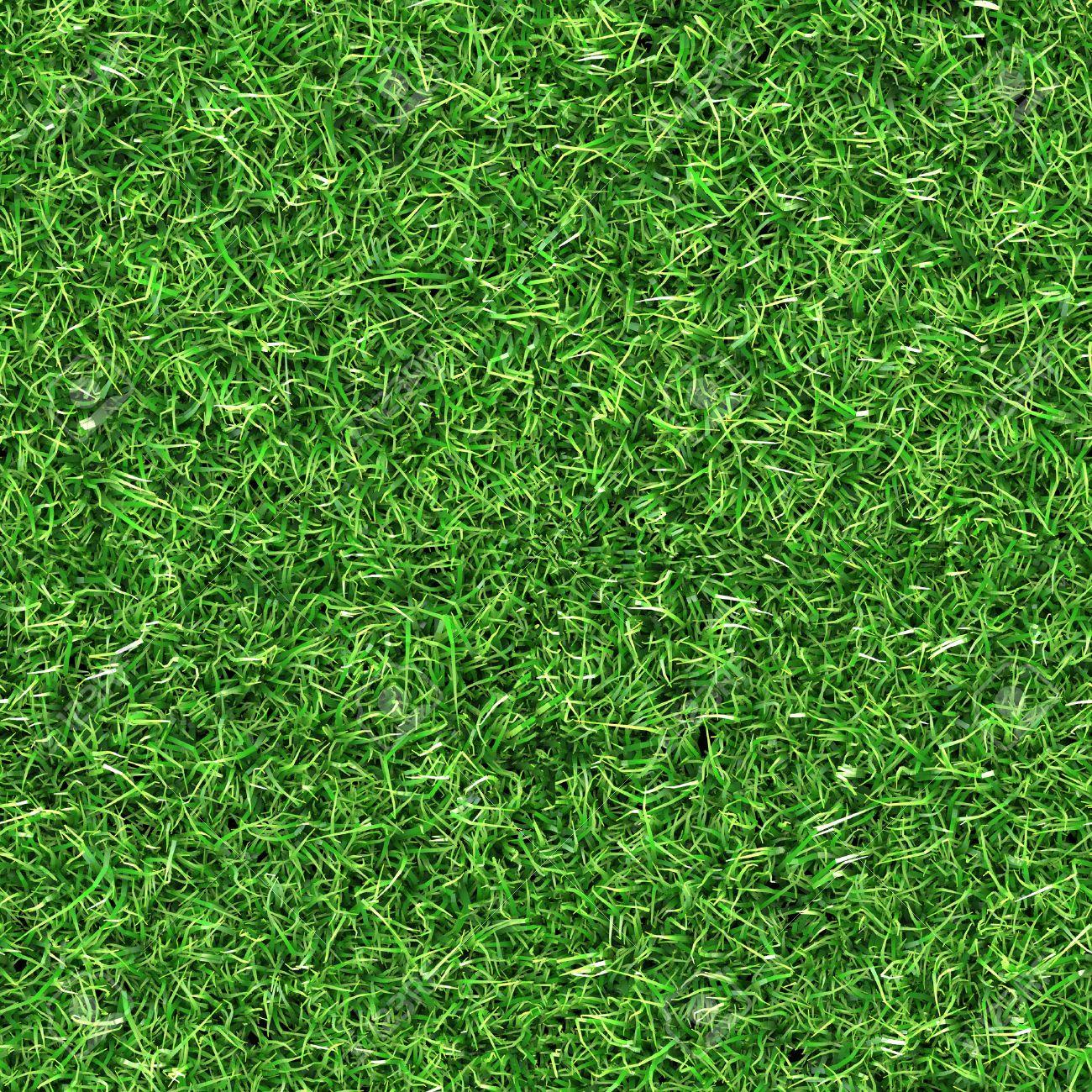 seamless grass texture Stock Photo - 31443220