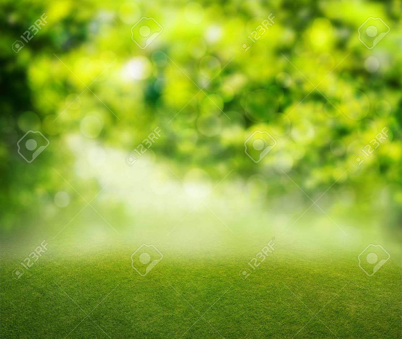 grass background - 34293669
