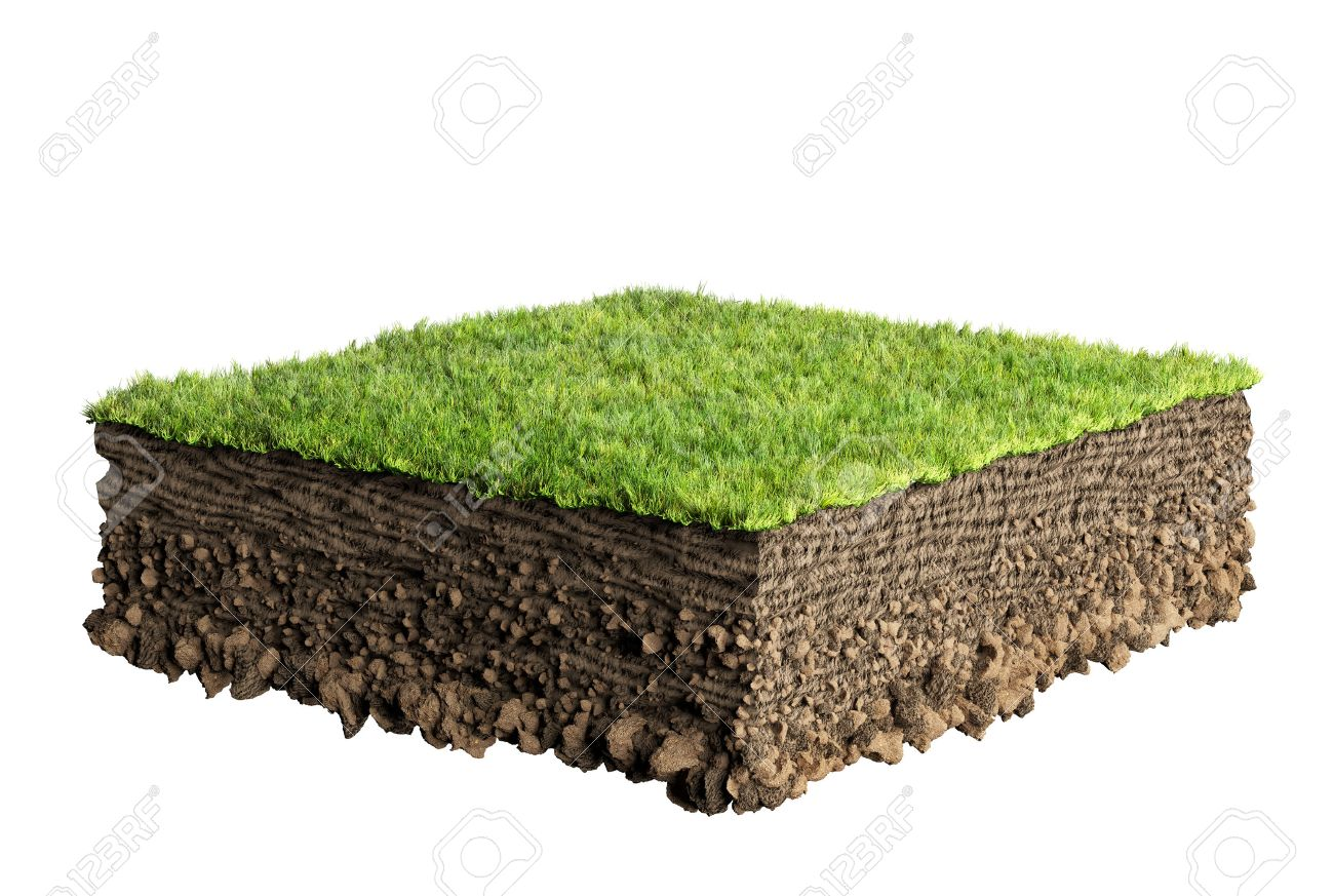 grass and soil profile - 35362612