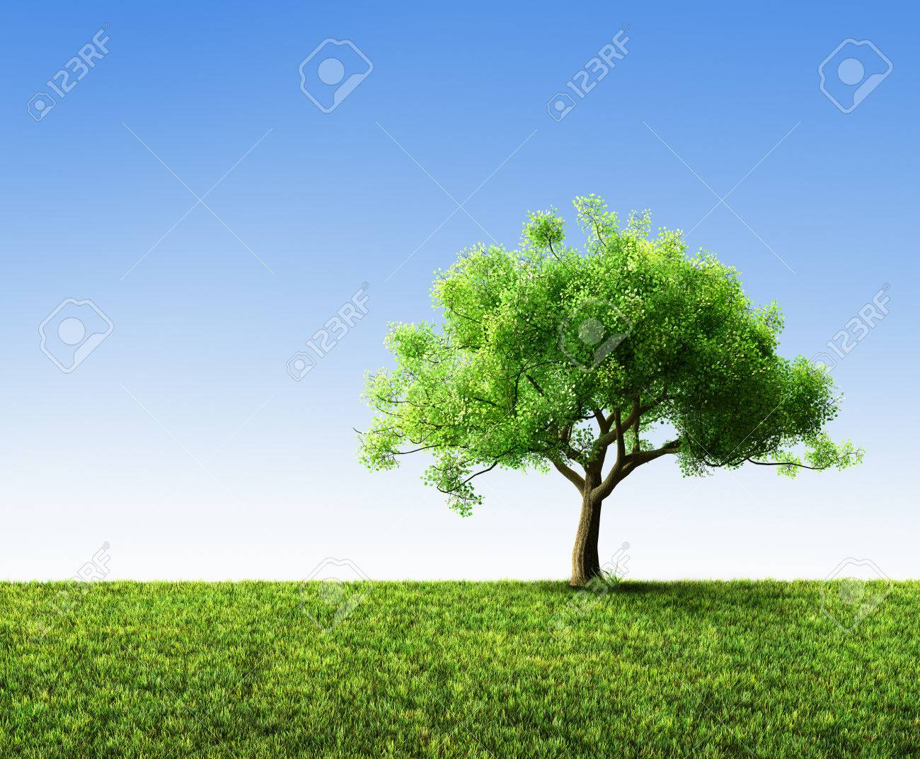 tree with grass - 37440748