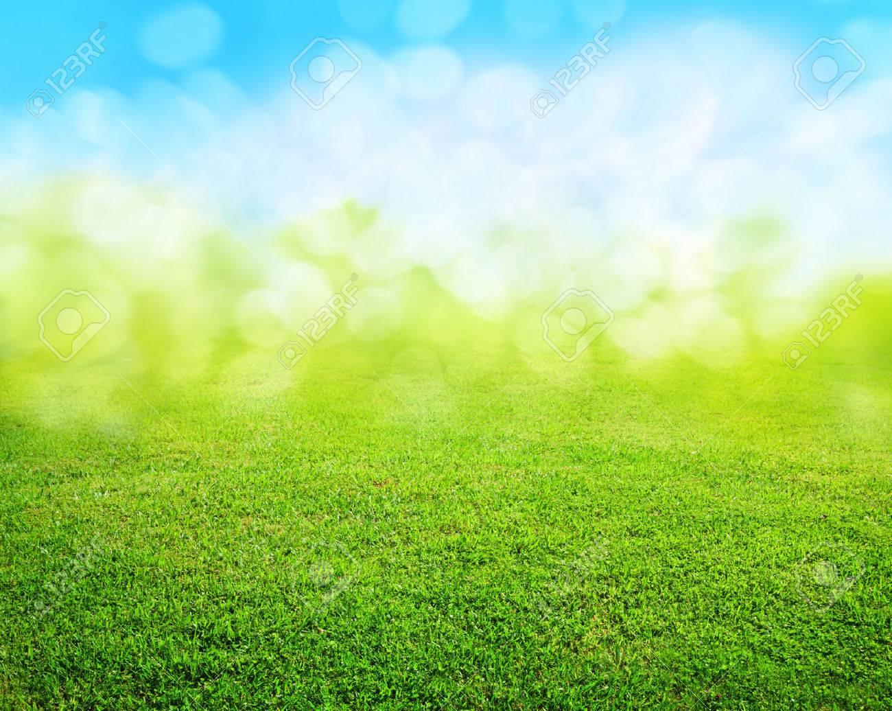 grass background - 47039727