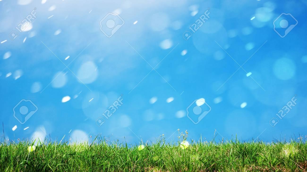 grass natural background - 72510551