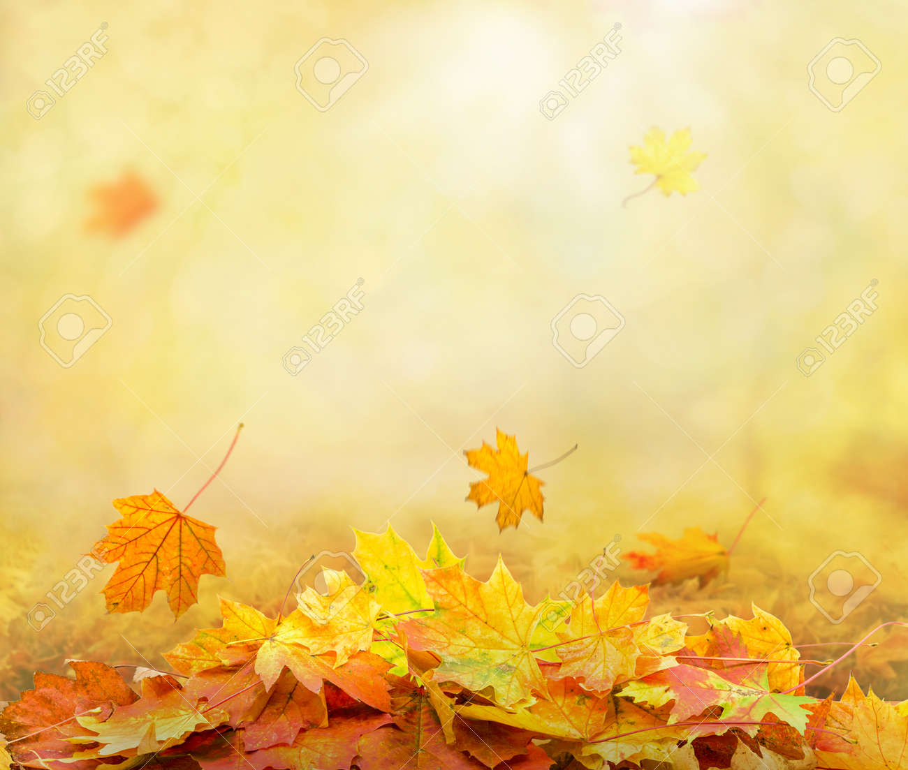 pile of autumn leaves in park, abstract background - 154812529