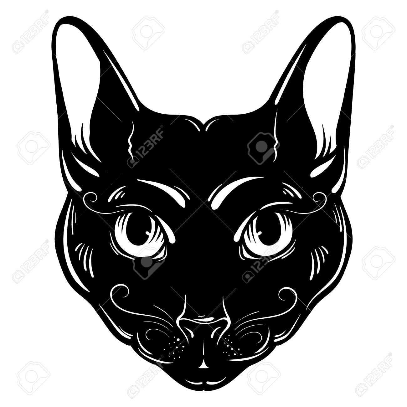 vektor hand gezeichnet ilustration der katze. charakter-design