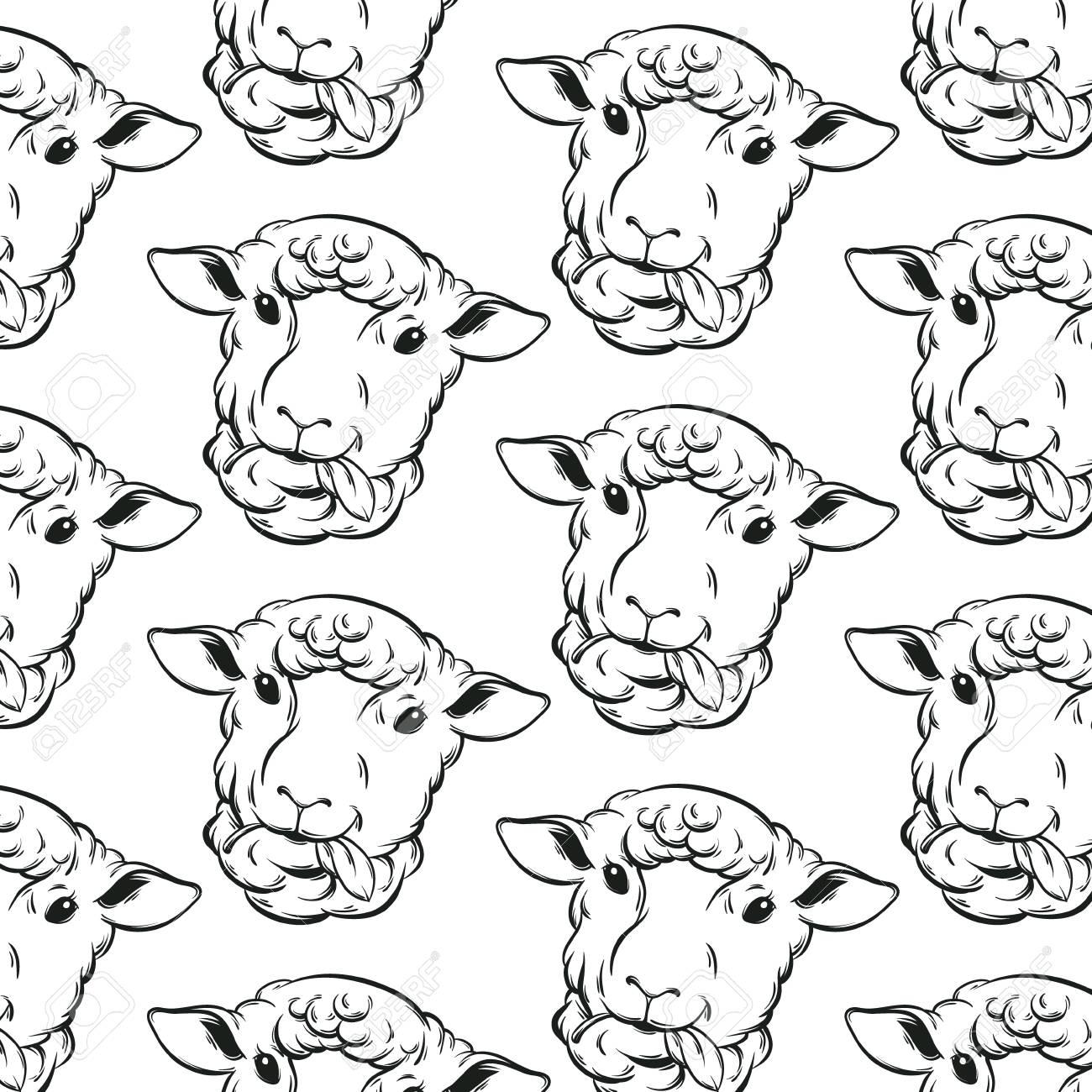 Vektormuster Mit Hand Gezeichneten Schafen Schablone Für Karte