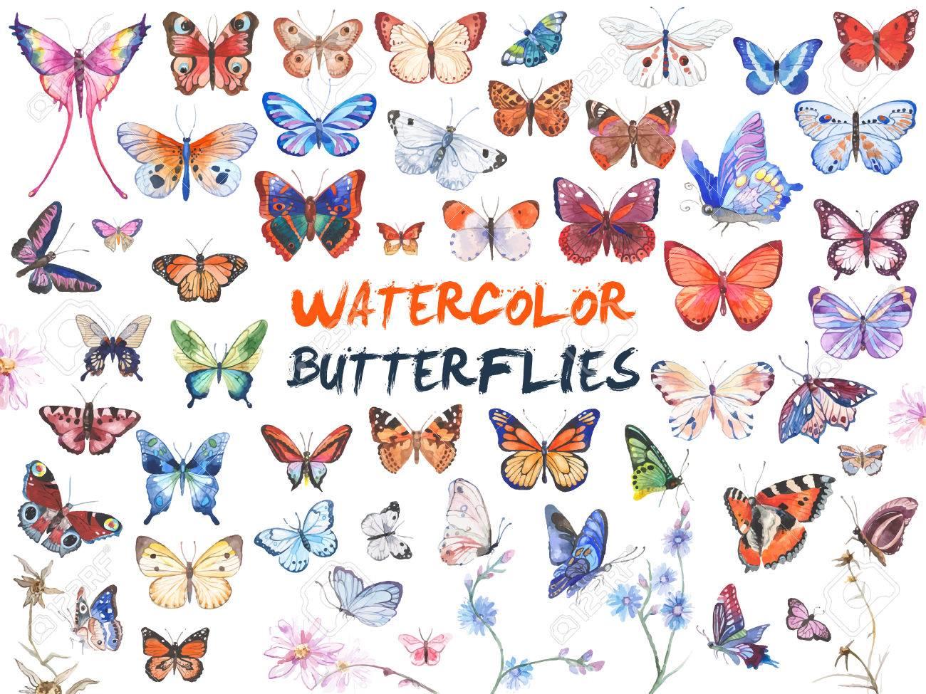 Watercolor butterflies illustration - 82678226