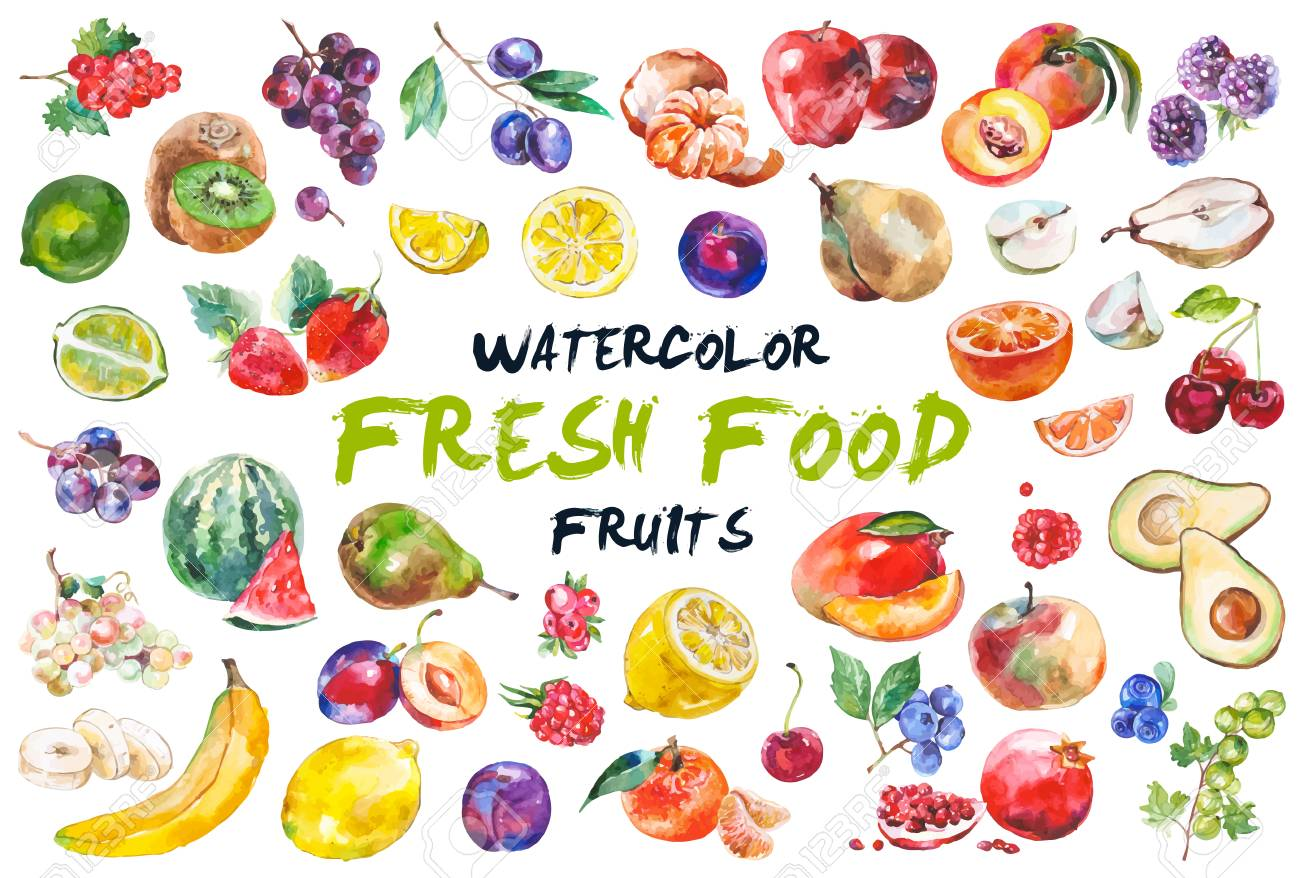 Watercolor fruits isolated on white - 90150507