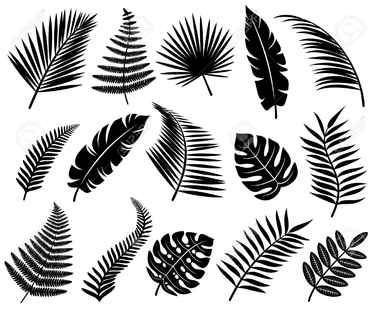 set of tropical leaves vector royalty free cliparts vectors and rh 123rf com leaves vector logo leaves vector free