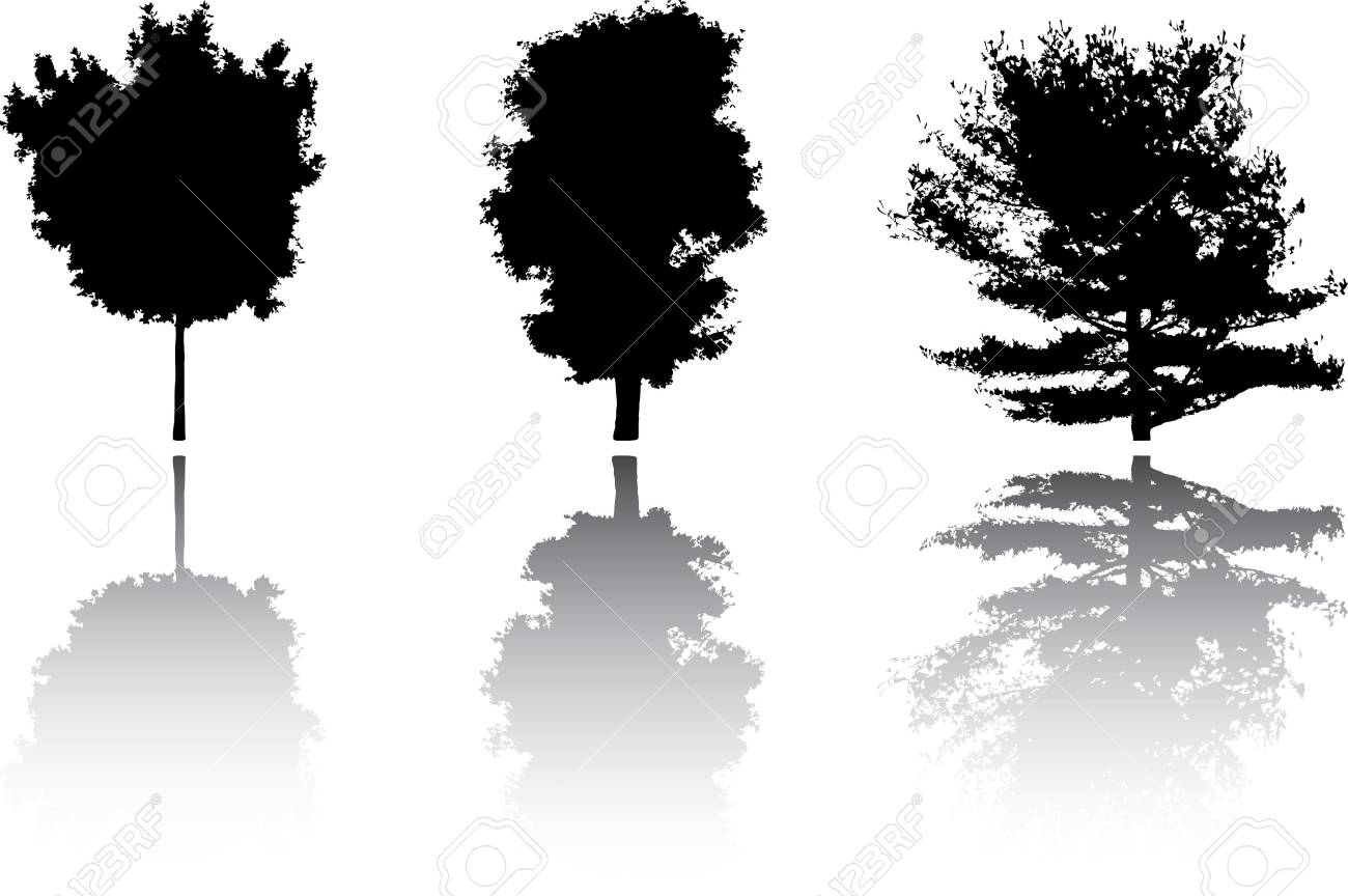 Silhouette a tree. Similar images can be found in my gallery. Stock Photo - 3633615