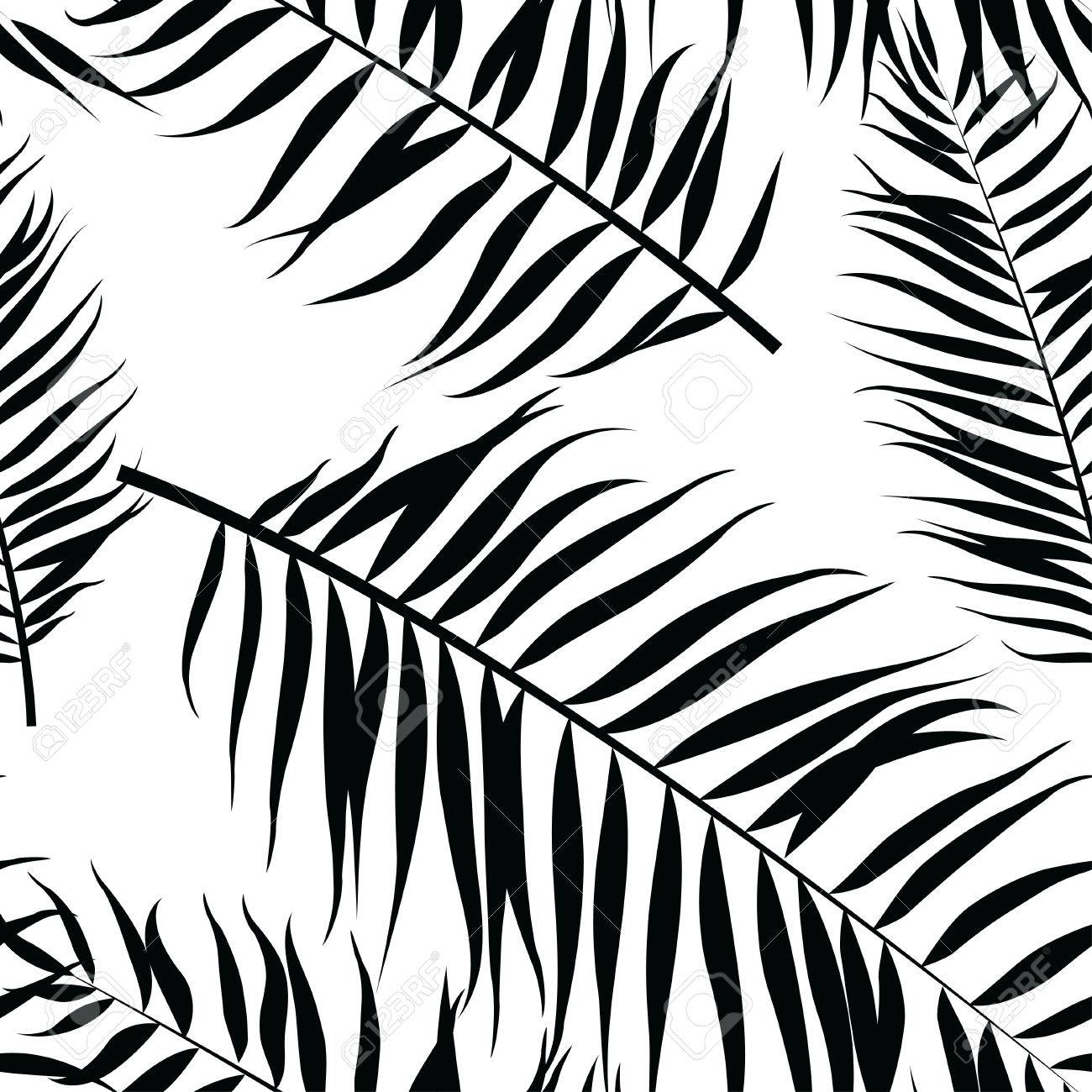 Vector vector illustration seamless color palm leaves pattern flat style black and white