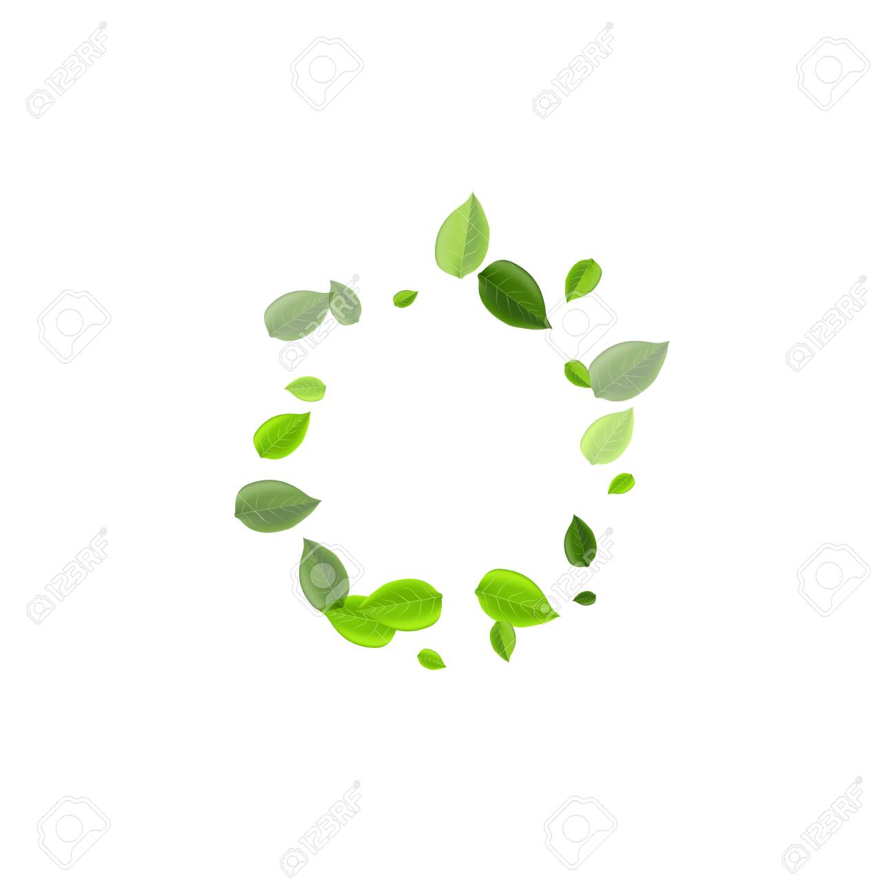 Lime Greens Transparent Vector Pattern. Flying Leaf Branch. Mint Leaves Swirl Illustration. Foliage Abstract Banner. - 148789842