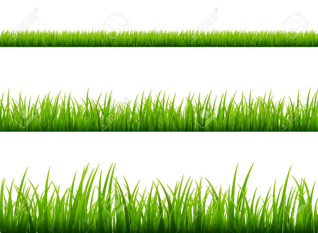 green grass meadow border vector pattern spring or summer plant rh 123rf com vector grass tutorial vector grass silhouette