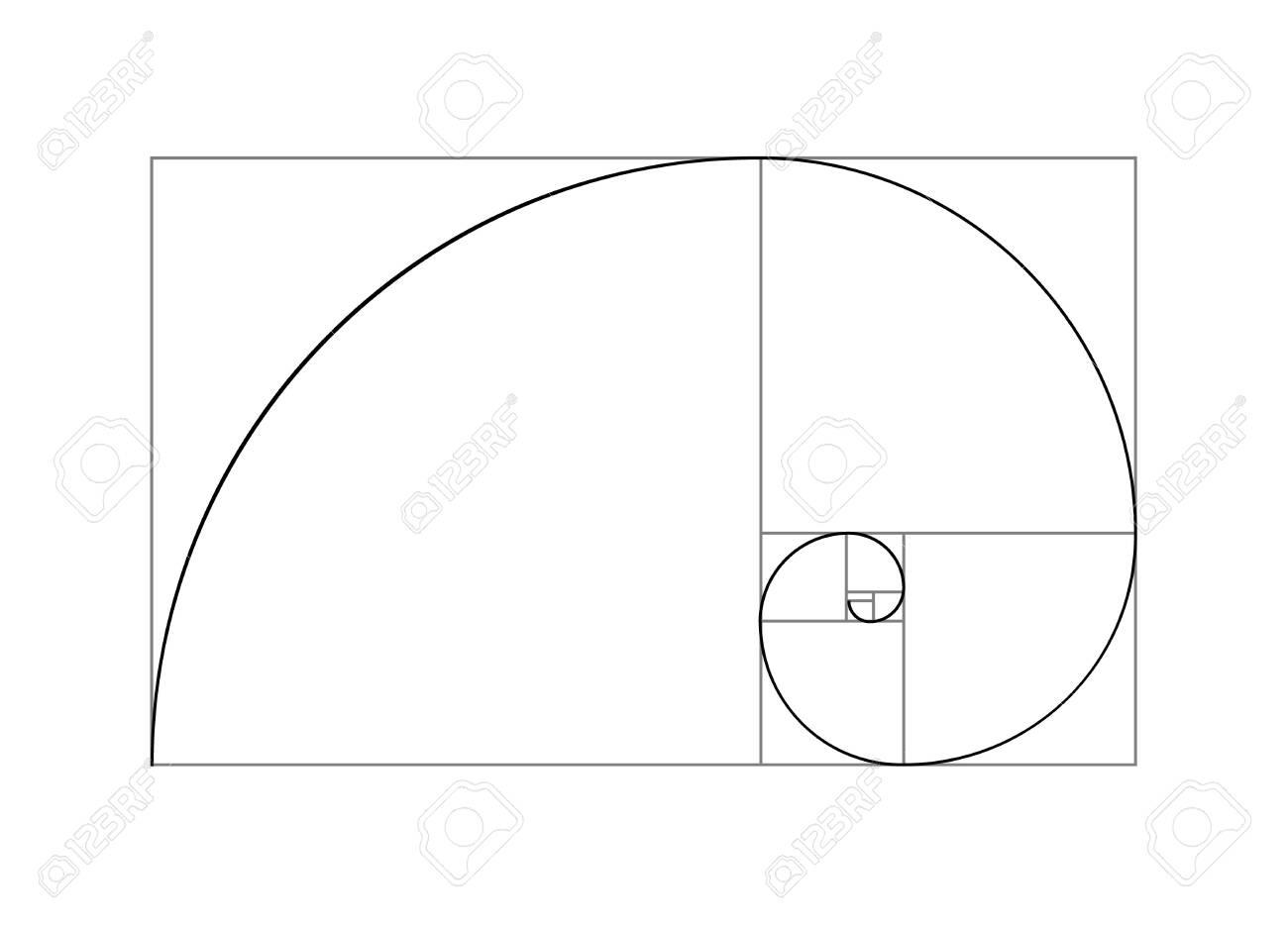 Golden ratio vector proportion spiral section. Fibonacci golden ratio geometry - 144227628