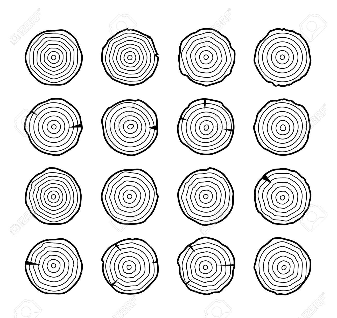 Tree growth rings wood trunk vector annual organic stump. Tree circle icon design - 168952917