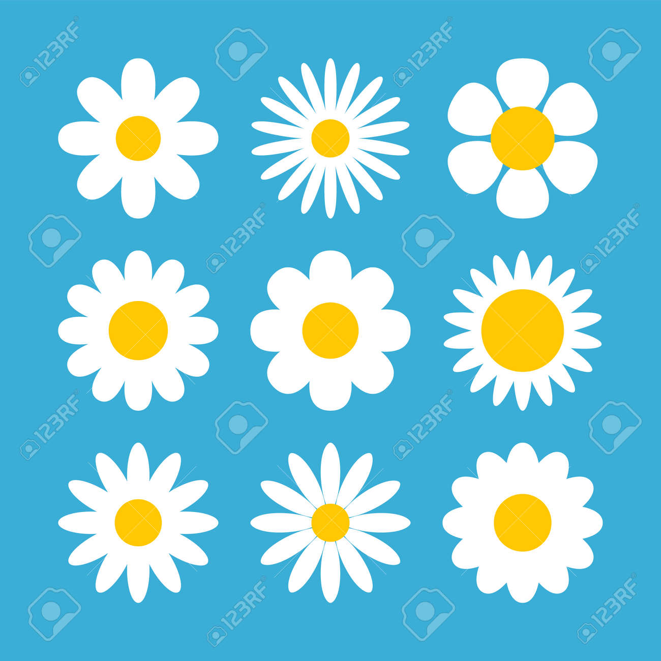 Daisy chamomile vector flower shape illustration icon. Camomile flower cartoon design - 168953037