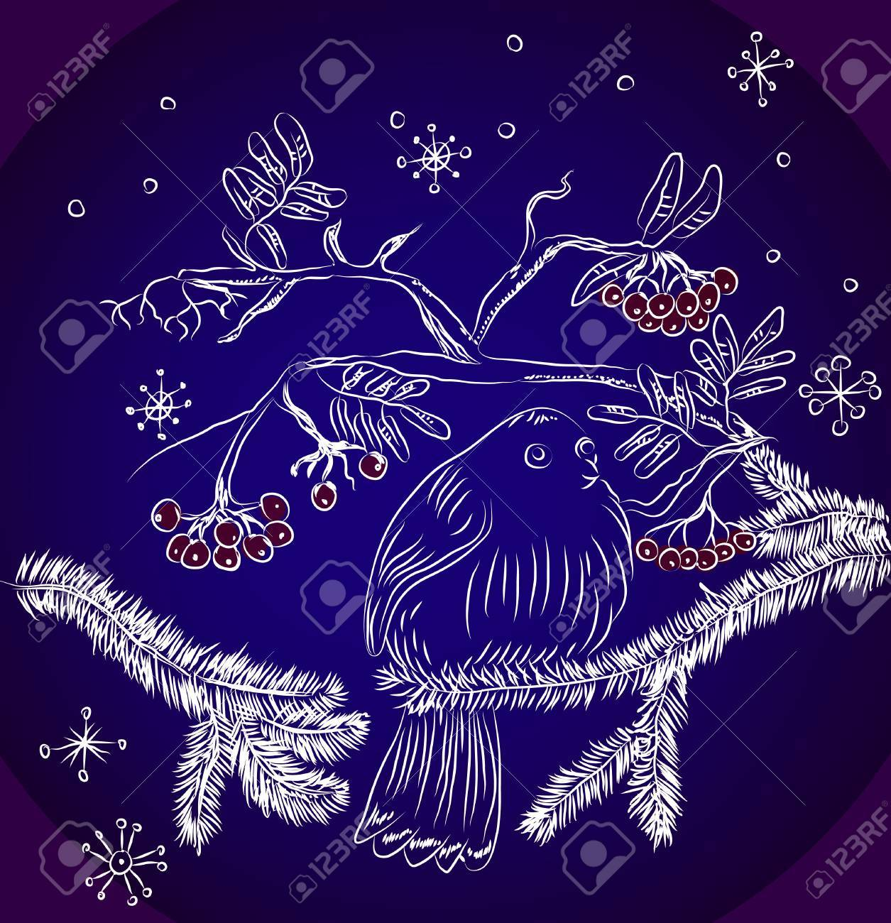 bullfinch and mountain ash dark blue background, beautiful  illustration Stock Vector - 15219685