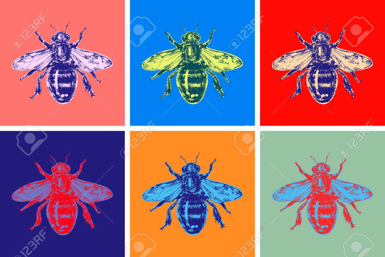 Bee Modern Art Hand Drawn Sketch Vector illustration. Pop art. Honey bumble bee bumblebee. - 170117501