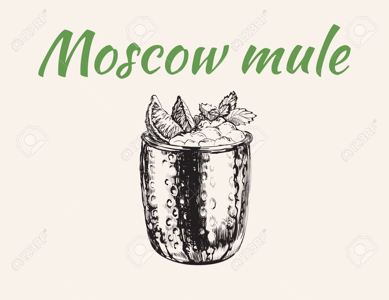 Moscow Mule Cocktail Hand Drawn Drink Vector Illustration - 173035244