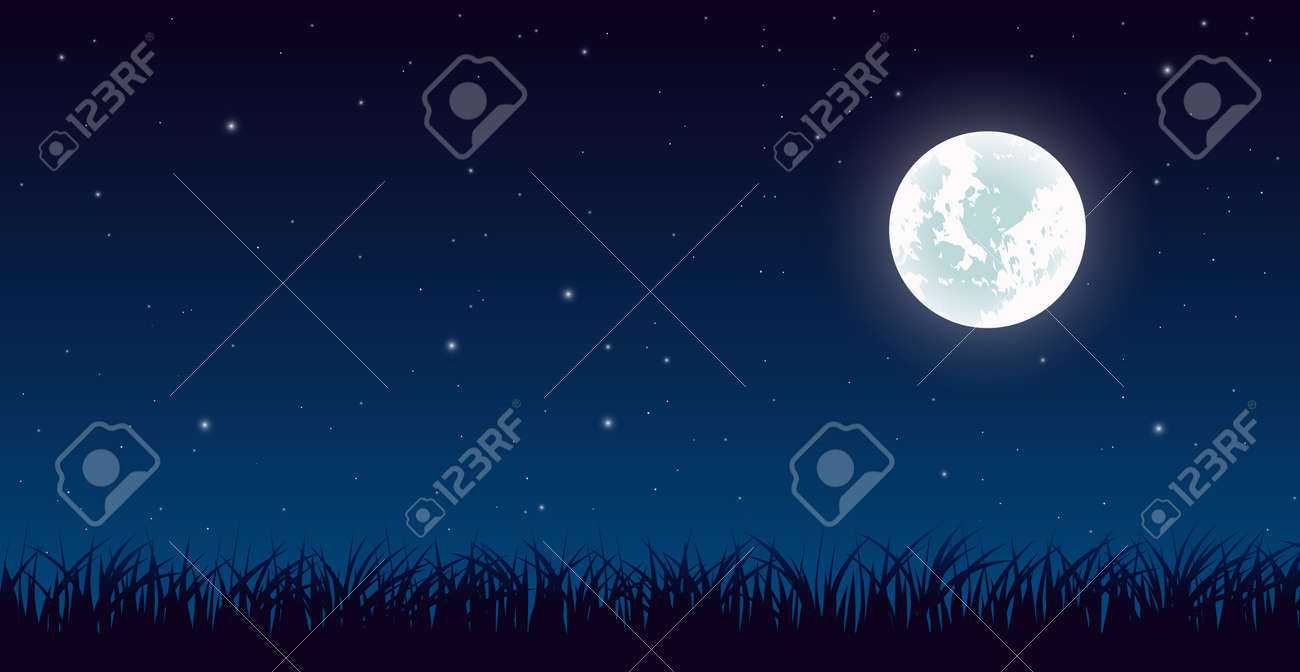 Blue dark night sky with lot of shiny stars and grass ground silhouette background - 173220195
