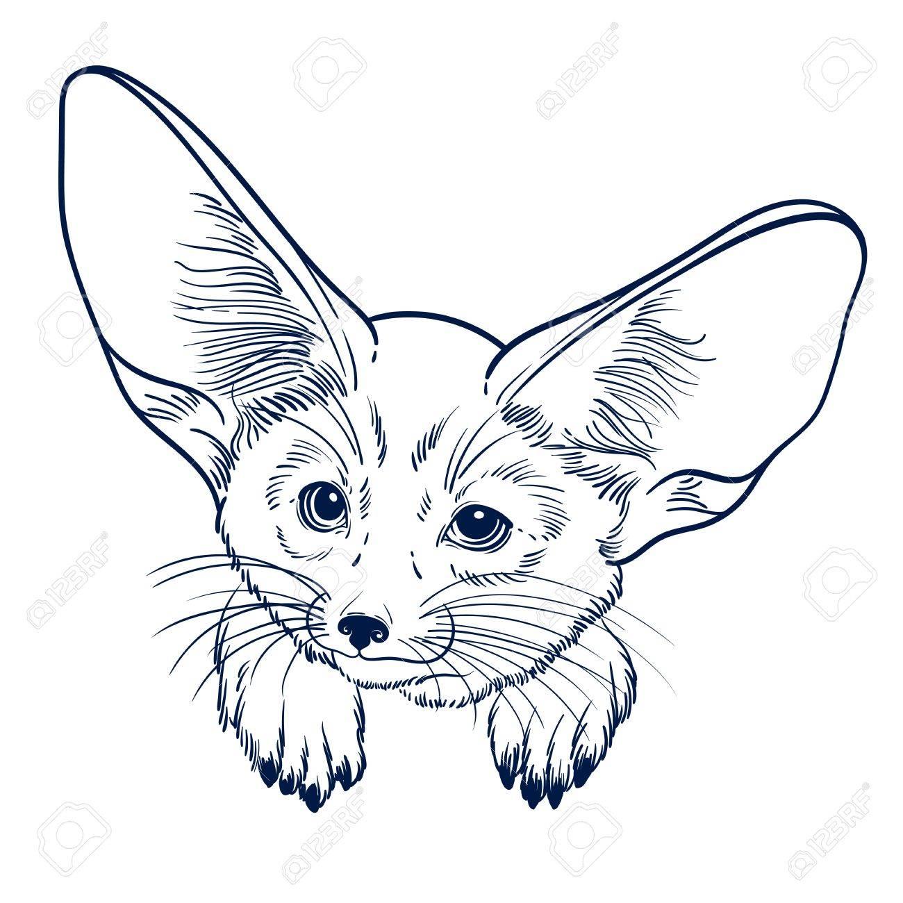 Cute Animal Petit Renard Fennec Enfants Linéaires Illustrations Pour Le Livre De Coloriage Pour Imprimer Des T Shirts Sacs Ou Couverture