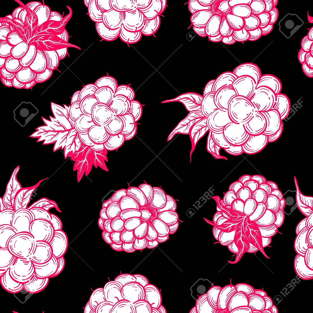 Sketch style vector eco food illustration. Hand drawn raspberry and blackberry seamless pattern on white background. - 144916138