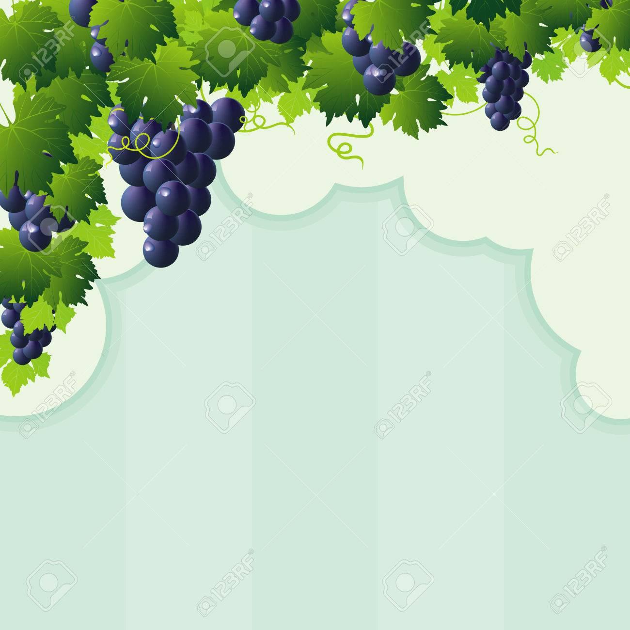 Abstrakte Blauen Reben Trauben Rahmen Mit Grünen Ausschnitt Und ...